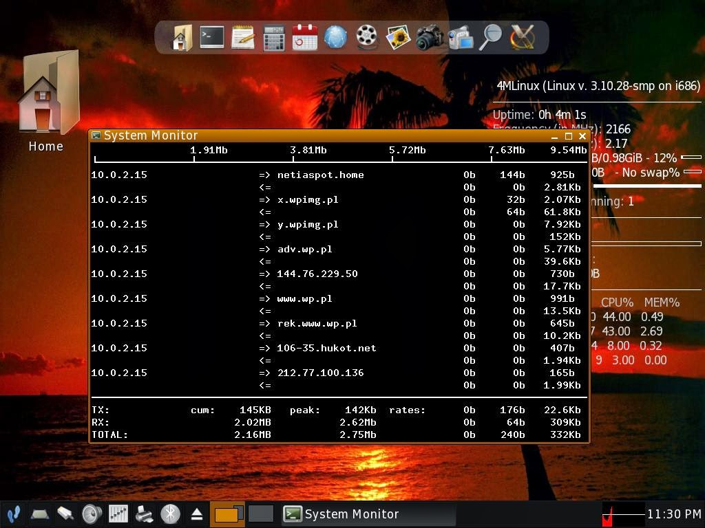 4MLinux Server Edition screenshot 1