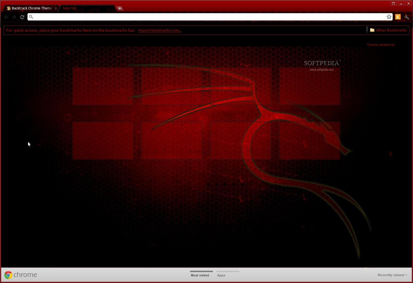 Backtrack Chrome Theme screenshot 1