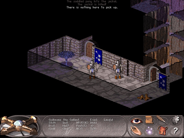 Falcon's Eye screenshot 3