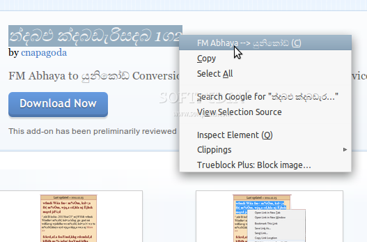 Font Conversion for Firefox screenshot 1