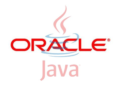 Download Oracle Java Standard Edition Runtime Environment Linux 11 0 1