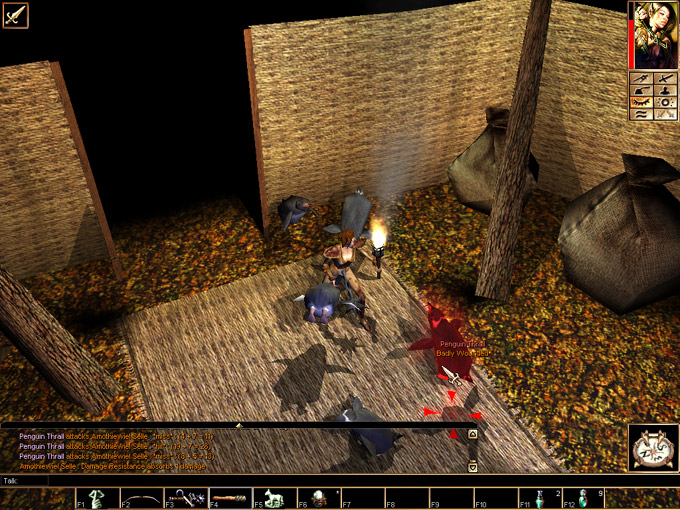 Download Neverwinter Nights Client Linux 1 69