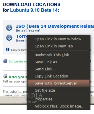 TorrentServer Handler screenshot 2